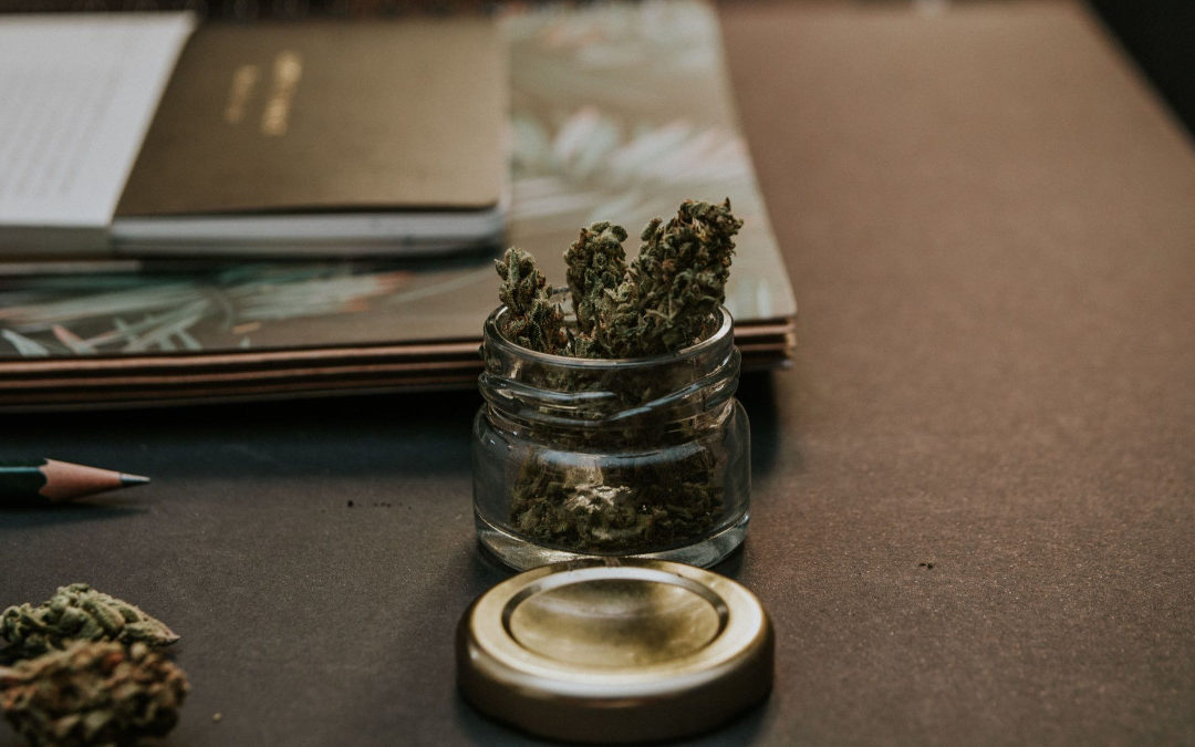 Is a Job in Cannabis Right for You? Here's what you need to know before it's too late.